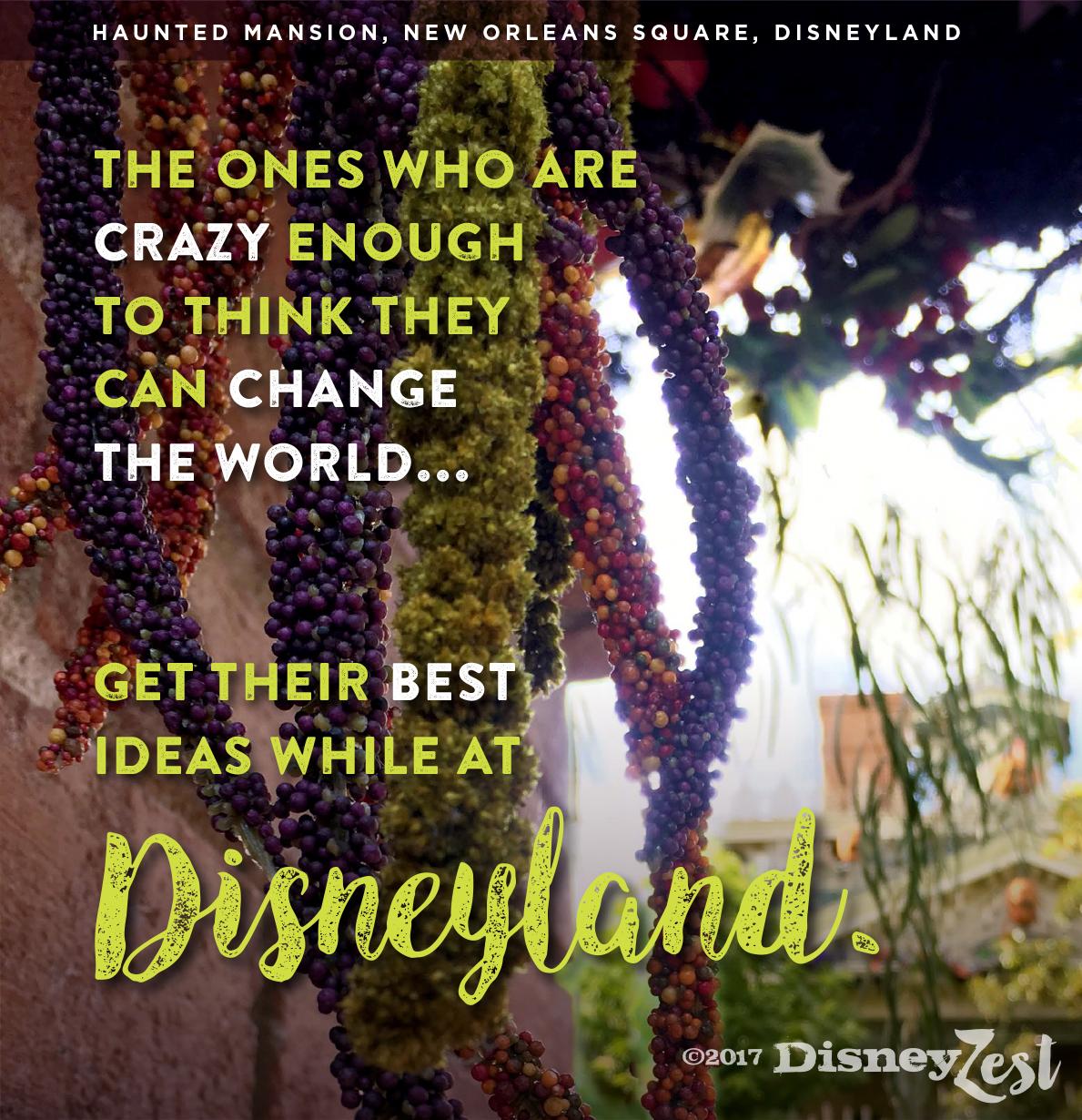 Disneyland Quotes   best ideas disneyland